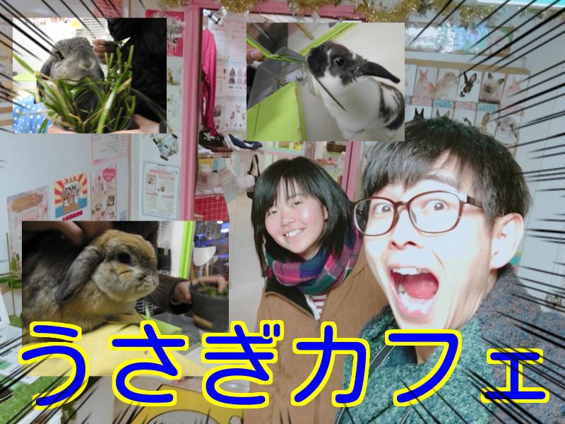 名古屋大須「うさぎカフェ」【口コミ・料金・駐車場】〜うさぎとcafe